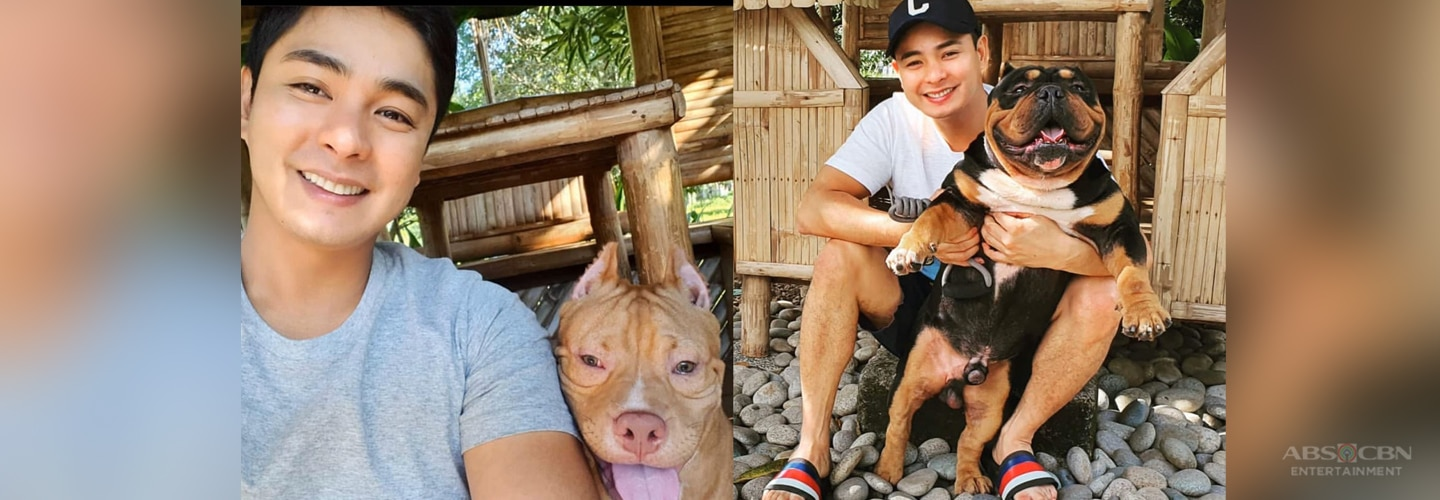LOOK: Meet Coco Martin's newest pet in these adorable photos