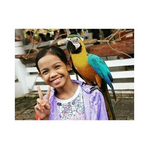 Zephanie Dimaranan before fame