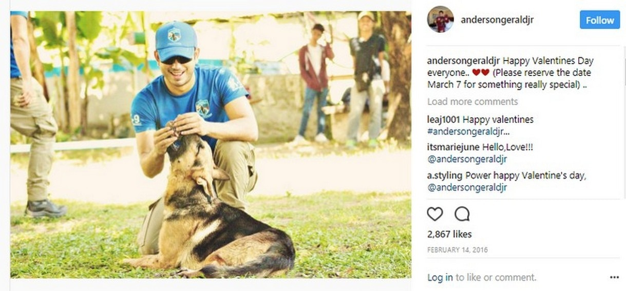 Gerald Anderson Dogs
