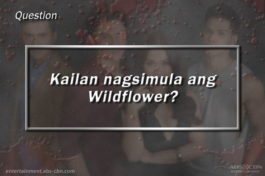 Wildest Wildflower Quiz