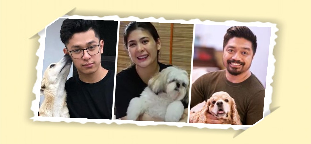 Kapamilya stars answer: Which animal matches your personality?