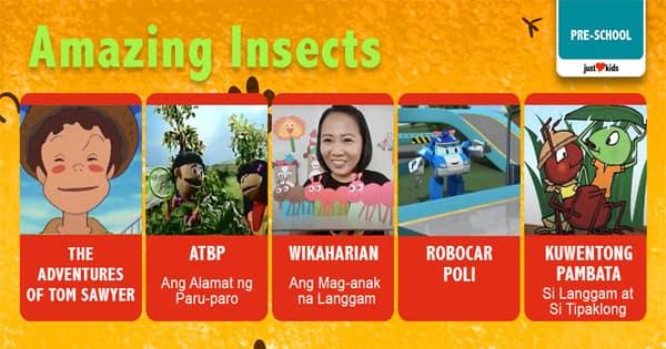 Curious about these little creatures? Kilalanin pa natin ang ating maliliit na kaibigan na malaki ang halaga sa kalikasan!
