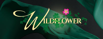 Wildflower ABS-CBN Entertainment