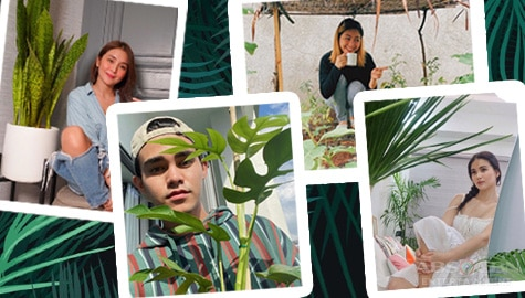 Kapamilya Snaps: These celebrities are certified 'plantitos' and 'plantitas'