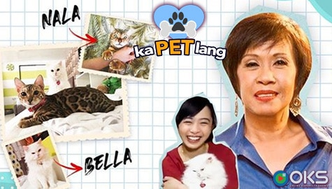Doris Bigornia and her daughter Nikki officially introduce their now famous cats on KaPet Lang