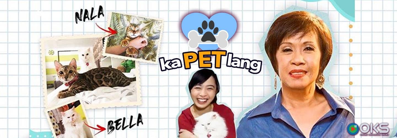 Doris Bigornia and her daughter Nikki officially introduce their now famous cats on KaPet Lang