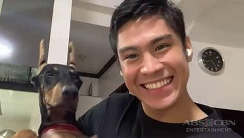 Jeremiah Lisbo's pet dog Kapamilya Chat