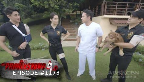 Ang Probinsyano: Task Force Agila, nagsimula na mamuhay sa probinsya | Episode # 1173 Image Thumbnail