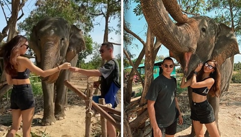 Umagang Kay Ganda: Jake Cuenca at Kylie Verzosa, game na nagpakain ng elepante sa Thailand Image Thumbnail