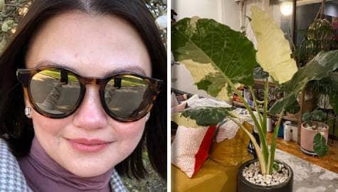 I Feel U: Angelica Panganiban, may mahigit 100 na halaman sa kanyang bahay! Image Thumbnail