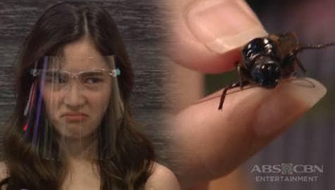 Ate Girl Jackque, naging emosyonal; Kumain ng Kuliglig! | It's Showtime Image Thumbnail