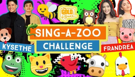 WATCH: Team Girls vs Team Boys in Sing-A-Zoo Challenge | The Gold Squad