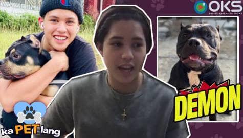 Kapet Lang: Meet Kyle Echarri's adorable dogs | Episode 5 - Online Kapamilya Shows Image Thumbnail
