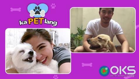 KaPET Lang: Meet Tony Labrusca & Alexa Ilacad's lovable dogs Image Thumbnail