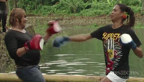 Rated K: Panoorin ang boxing ng mga bekis sa kawayan Image Thumbnail