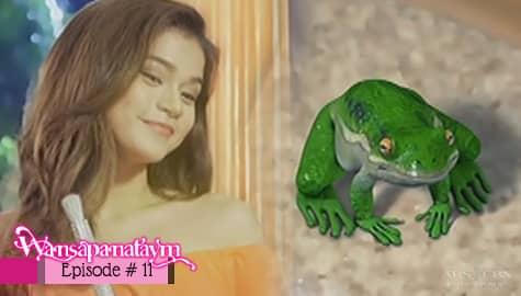 Wansapanataym: Fairy Sylvia, ipinaliwanag kay Froggie ang sitwasyon ni Annika | Episode 11 Image Thumbnail