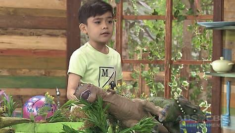 Sunday Funday: Dinosaurs | Team YeY Season 4 Image Thumbnail