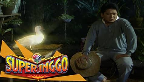 Super Inggo Episode 33 Image Thumbnail
